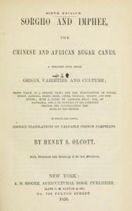 Sorgho Imphee by Henry Olcott